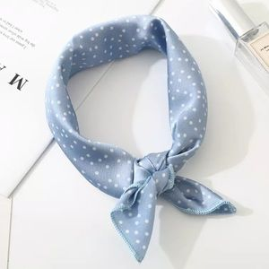 Accessories - Light Blue & White Polka Dot Neck Scarf